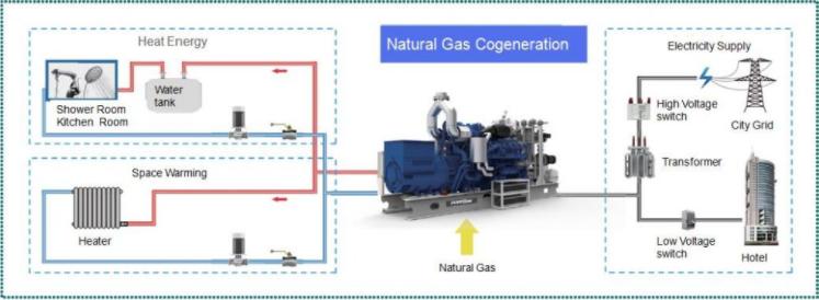 natural gas cogenaration