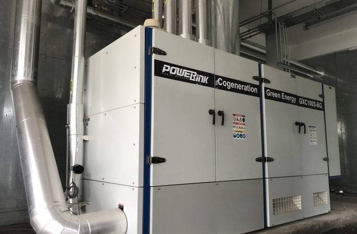 Renewable-Energy-solution-biogas cogeneration GXC100S-BG